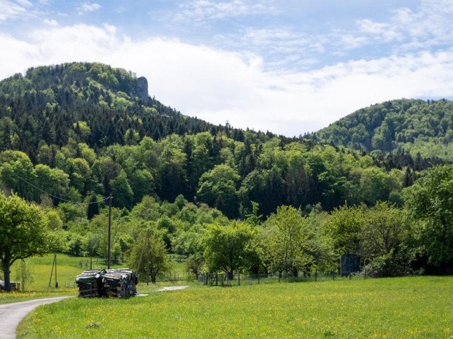 Ausblick auf die Lochen und den Lochen- stein (963,6 m ü. NHN)