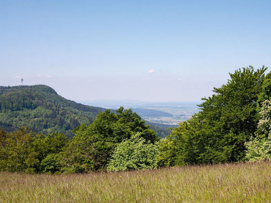 Blick vom Hörnle auf den Plettenberg und den fernen Schwarzwald